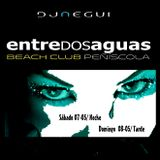 ENTREdosAGUAS-GIN-MUSIC-AFTERNOON BY DJ.-NEGUI