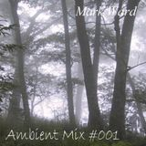 Ambient Mix #001