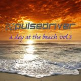 Pulsedriver - A Day At The Beach vol.3 (Continuous DJ Mix)