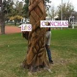 #LASCONCHAS - Temp.2 - EPISODIO 1