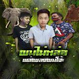 Mixset Limited (ผมไม่หล่อ แต่เพลงผมโจ๊ะ) By DJ F A M & DJ Yang Yokor