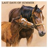 Last Days of Summer - House mix by Manuel Kim