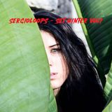 SERGIOLOOPS - SET WINTER VOL1