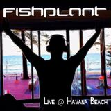 Los Gitanos Live @ Havana Beach Bar, Sydney