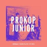 Prokop Junior - Radio Plato & 34mag NY 2019 Music Marathon