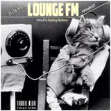 Andrey Malinov - On the Waves Lounge FM...# 67