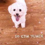 10 EDM YUMIX