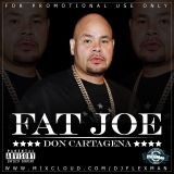 FAT JOE MIX