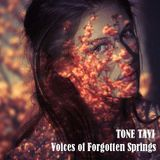 Tone Tavi - Voices of Forgotten Springs