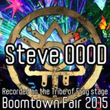 Steve OOOD - Recorded on the Tribe of Frog stage at Boomtown 2015
