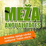 Meža aktualitātes - Mārtiņš Kalniņš (18.07.2019.)