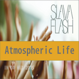 Atmospheric Life@Slava Flash In Da Mix 2015