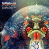 Lookingbreakz - Ufo Bufo 2015