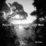 Sublime Timbre Ep: 1 (Tribute to Larry Heard AKA Mr Fingers mini mix)