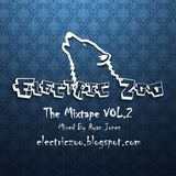 Electric Zoo : The Mixtape Vol.2