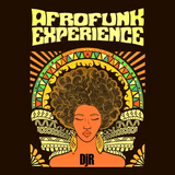 DJ Rosa from Milan - Afrofunk Experience