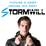 Future & Deep House Mix #001 | EDM Mix by Stormwill | March, 2015