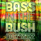 Sub-Bass in the Bush 2017