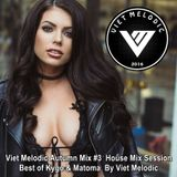 Viet Melodic Autumn Mix #3 ♦ House Mix Session Best of Kygo & Matoma ♦ By Viet Melodic
