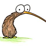 flying kiwi birds
