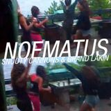 Noematus - Snooty Cannons & Grand Lakin - Live Summer 2013