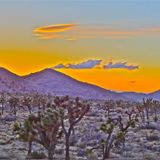 Joshua Tree Dirty Electro Mix - May 17, 2013 - Redux