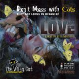 Don't Mess with Cats - Love like in the movies tracks only
