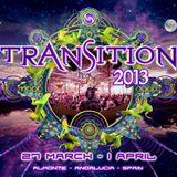 At Transition Festival 2013