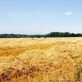Türp - Harvest Time