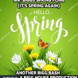 Mr. Biggs Spring Fling
