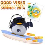 Good Vibes - Summer 2014