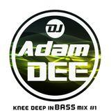 Knee Deep In Bass Mix #1
