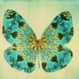 Where Butterflies Dance - Live set 05/20113