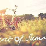 DJ_Joke_Spirit_of_Summer