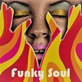 Funky Soul - The Groove is Gonna Get Ya!