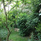LIVE at Tyto Alba's Sanctuary Garden -0.2   --11/2012--