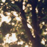 TNT (IX): Summer Into Autumn / OBG (2) 09142015