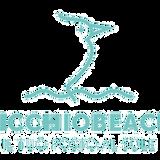 LIVE TECH C AT PICCHIO BEACH