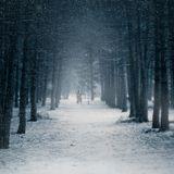 Semih Karakas & Enes Karakas - Winter's Tale [Season's Mixtape 2015]