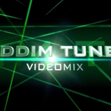 DJ SOLO - RIDDIM TUNES V-MIX VOL.7