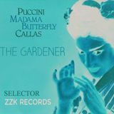 Butterfly // ZZK Record // Selector
