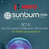 E009 - Sunburn Noida Warm Up - October 2013