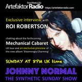 AR011 THE JOHNNY NORMAL SYNTHETIC SUNDAY SHOW