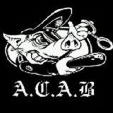 20.decembar.2011.   A.C.A.B.