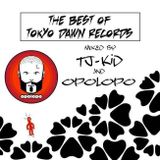 TJ-KiD& Opolopo - The Best of Tokyo Dawn Records