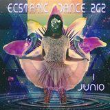 ECSTATIC DANCE ZARAGOZA JUNIO 2019