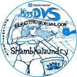 Digitally Imported Radio- MissDVS - ElectroSexual 009 (Sept 2010) Shambhalaundry