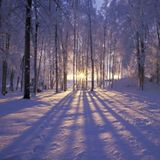 Winter Mood2015