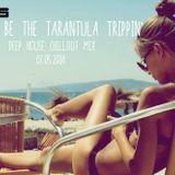 |Rather Be The Tarantula Trippin'|DeepHouseRemix|03.05.2014