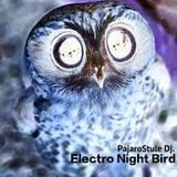 The Electro Night Bird.